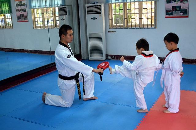 Taekwondo – vom Anfänger zum Meister